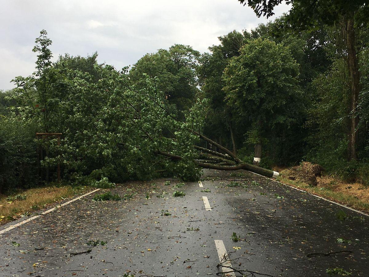 La N5 entre Dippach et Schouweiler fut bloquée.