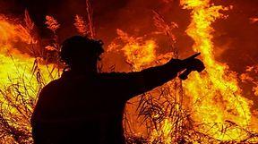 Temperaturas voltam a subir e bombeiros pedem reforço do estado de alerta