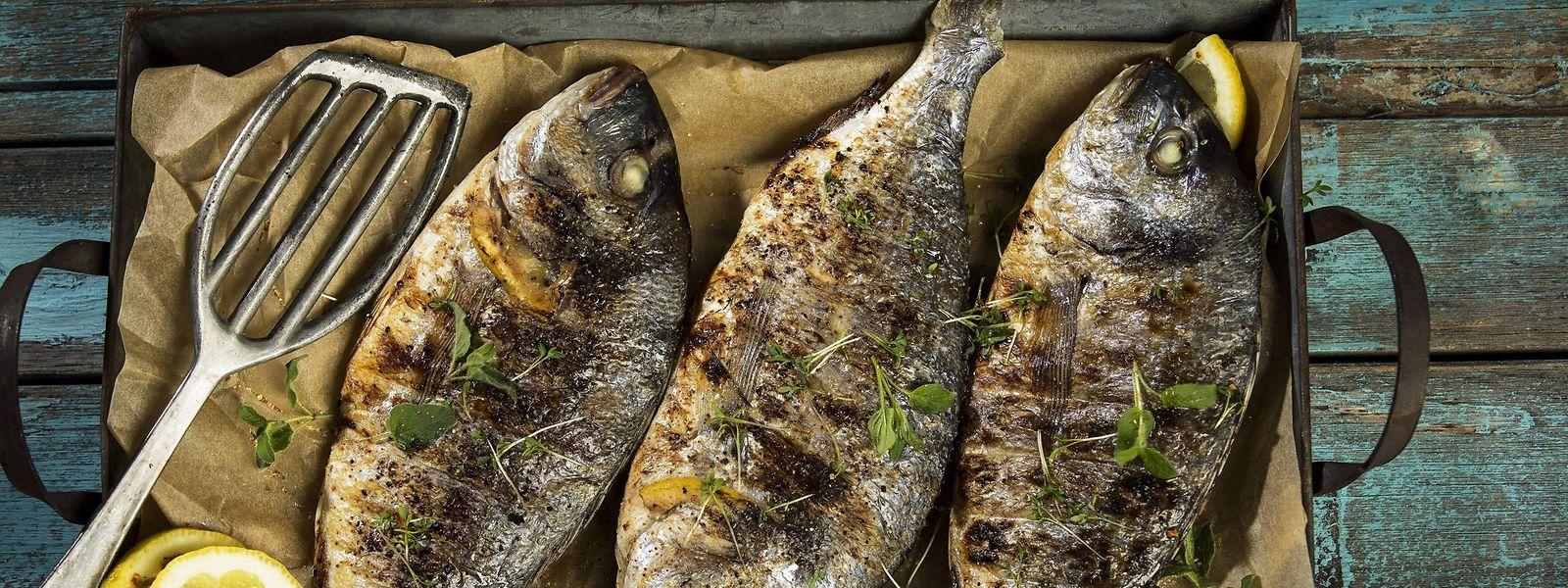 Fisch ist sowohl in der Mittelmeerküche als auch in der nordischen Küche zuhause.