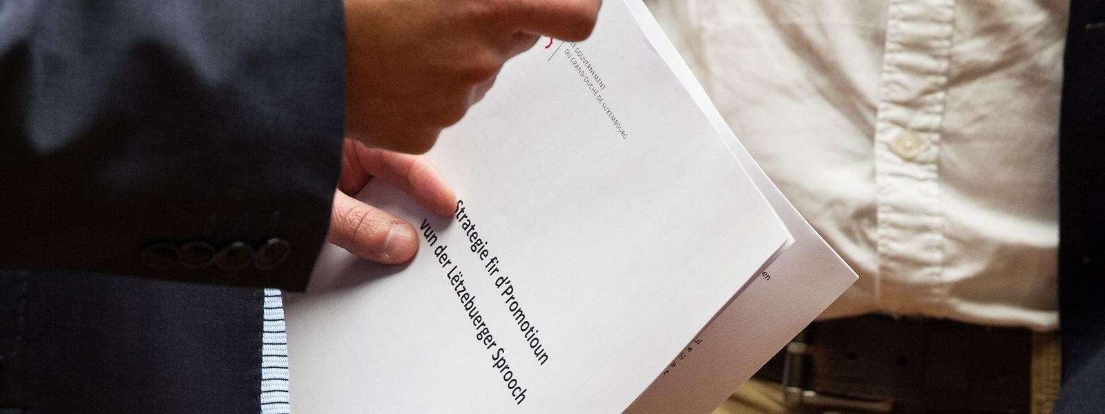 Aktionsplan Luxemburger Sprache.