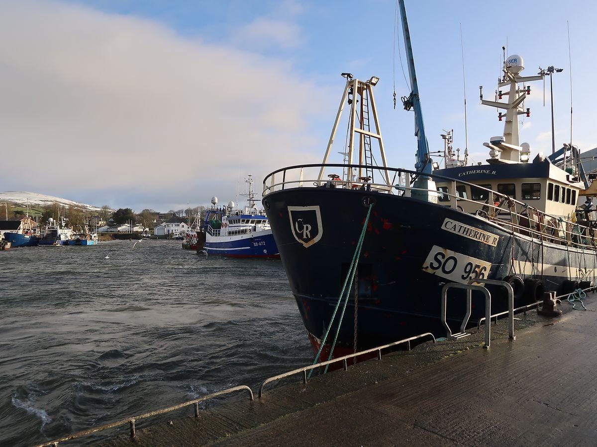 Der Hafen von Greencastle in der Republik Irland