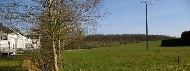 Die Hähnchenmästerei ist etwa in Höhe der Abgrenzungshecke (rechts auf dem Bild) des Bauernhofs geplant, unweit der Häuserreihe der Pissinger Duerfstrooss.