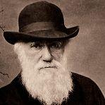 História em BD conta como só por pouco a seleção natural foi atribuída a Darwin