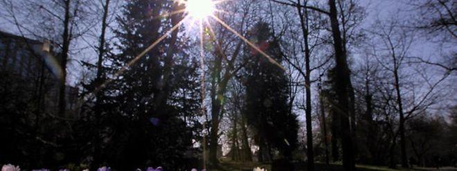 Am Wochenende kündigt sich Frühlingswetter an.
