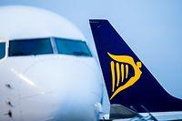 ARCHIV - 12.09.2018, Nordrhein-Westfalen, Weeze: Flugzeuge der irischen Airline Ryanair stehen auf dem Vorfeld des Flughafens. Europas größte Billig-Airline Ryanair hat am Dienstag wegen der Corona-Pandemie alle Flüge für mindestens zwei Monate gestoppt. Das Unternehmen gehe derzeit davon aus, dass keine Flüge im April und Mai stattfinden werden, teilte Ryanair-Chef Michael O'Leary in Dublin mit. Foto: Marcel Kusch/dpa +++ dpa-Bildfunk +++