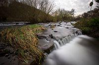 Auch die Fließgewässer leiden unter der anhaltenden Trockenheit