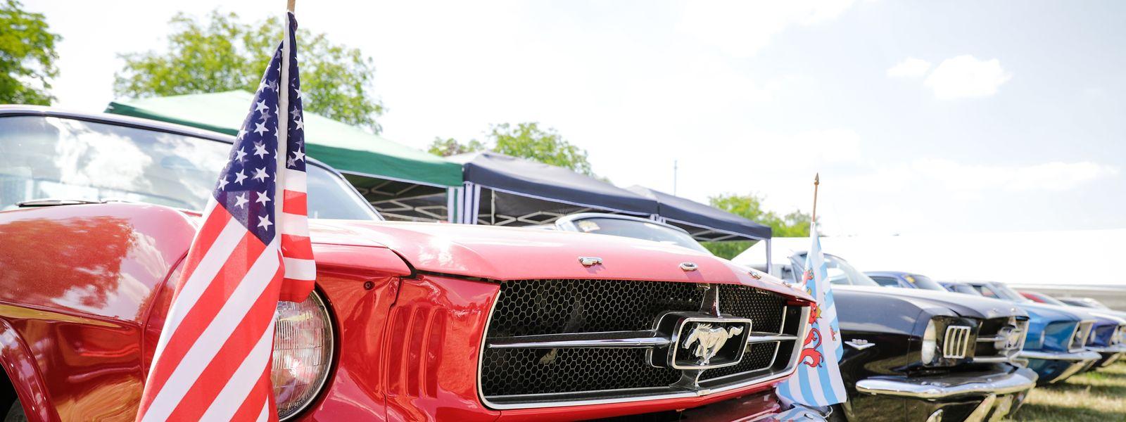 700 Fahrzeuge stehen derzeit in Stadtbredimus.