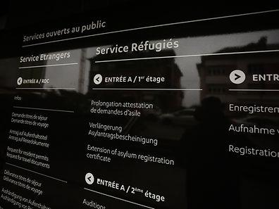 Im vergangenen Jahr erhielten mehr als 750 Asylbewerber das Flüchtlingsstatut.