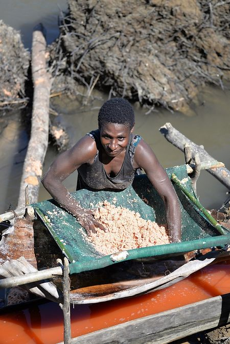 Sago gilt im Inselstaat als eines der Hauptnahrungsmittel. Es wird aus dem Mark der Sagopalme gewonnen.