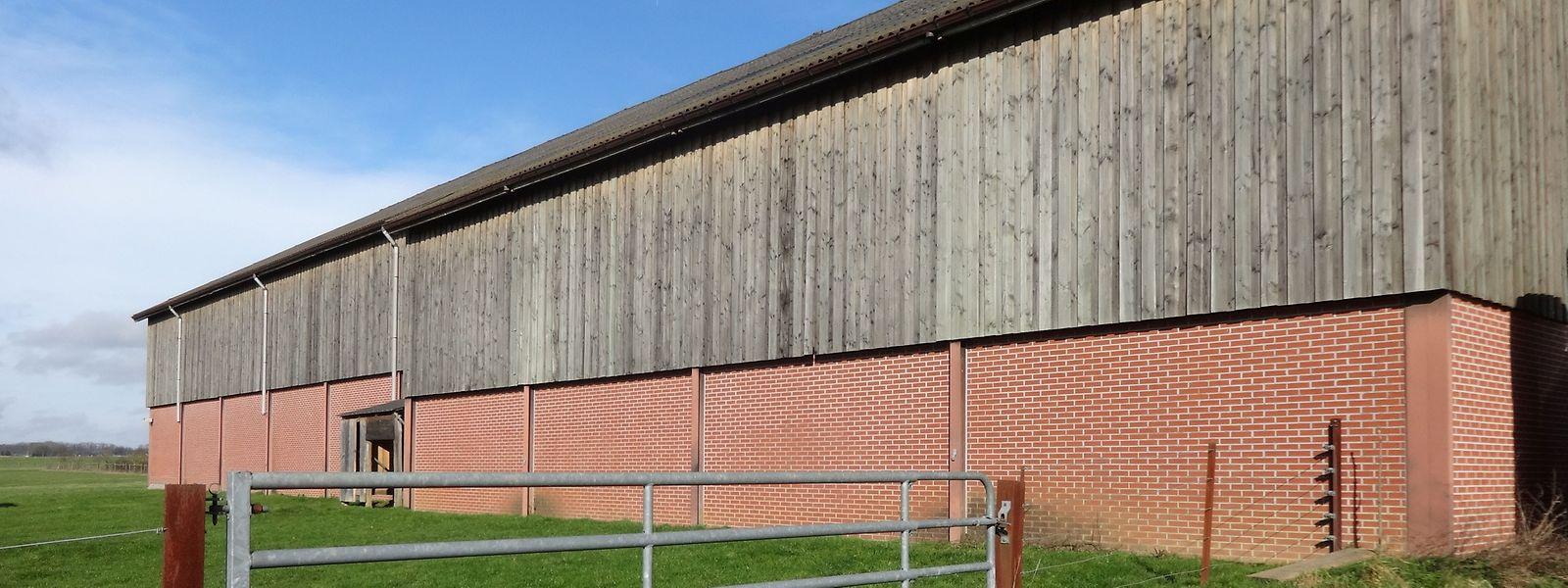 Wegen einer Unklarheit im kommunalen Bautenreglement werden in der ländlich geprägten Gemeinde Reckingen/Mess seit 2015 keine Baugenehmigungen mehr ausgestellt für landwirtschaftliche Gebäude über 14 Metern.