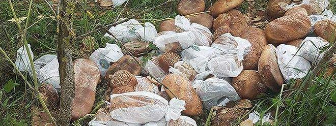 De grandes quantités de pain provenant d'une boulangerie Fischer ont été découvertes récemment par un promeneur à la lisière d'une forêt près de Wincrange.