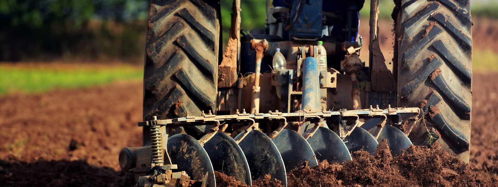 Faute d'utiliser des herbicides, les exploitants vont davantage avoir recours à la charrue.