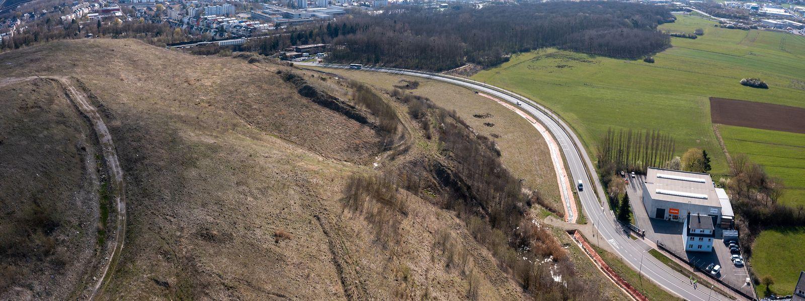 Zwischen der Landstraße und dem Crassier wird die Drainage beginnen und Richtung Kiemelbaach führen.
