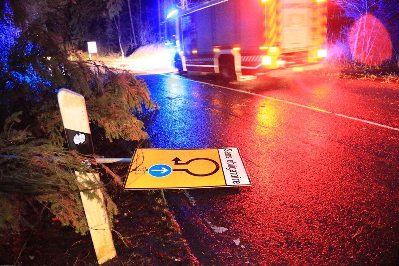 An vielen Stellen waren Straßen aufgrund umgestürzter Bäume unpassierbar.