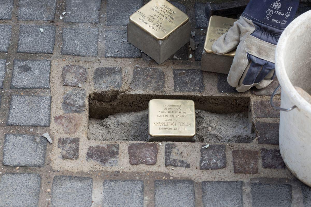 Stolpersteine sind kleine individuelle Gedenktafeln, vom Künstler Gunter Demnig entwickelt. Sie halten die Erinnerung an Shoah-Opfer vor deren letzten frei gewählten Wohnhäusern wach.