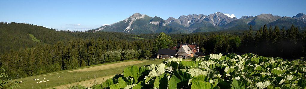 Die beeindruckende Landschafte der Hohen Tatra setzt die Kulisse für Agrotourismus und Slow Living.