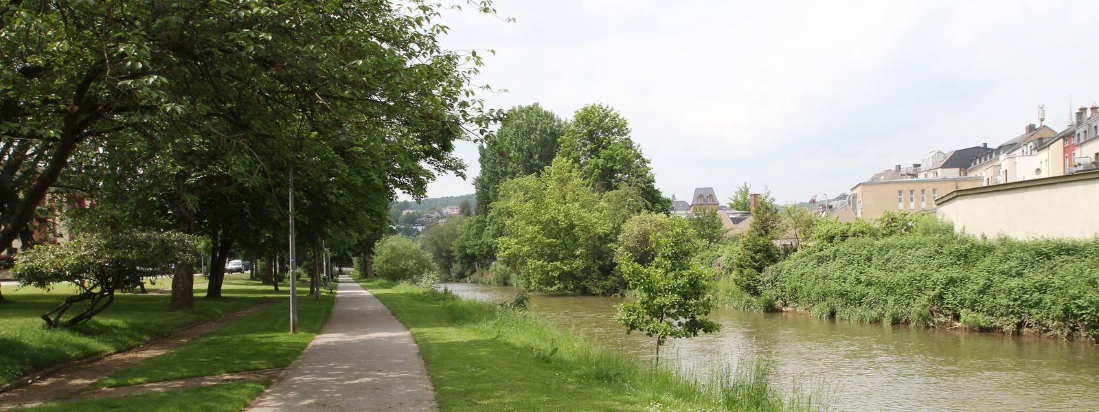 Die bestehende Promenade entlang dem Alzetteufer wird verbreitert, während Holzplattformen errichtet werden, die über die Alzette ragen.