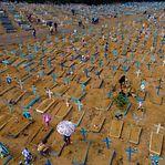 Covid-19. Mais 889 mortos e 25.200 casos em 24 horas no Brasil