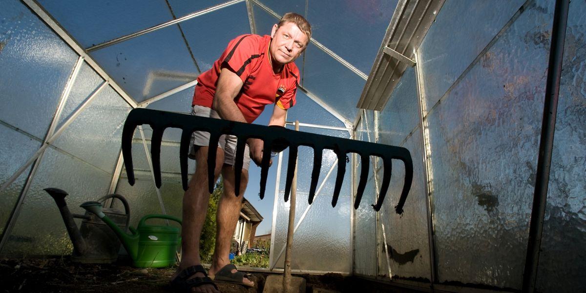 Eine Harke eignet sich vor allem für das Auflockern oder Ebnen des Bodens.