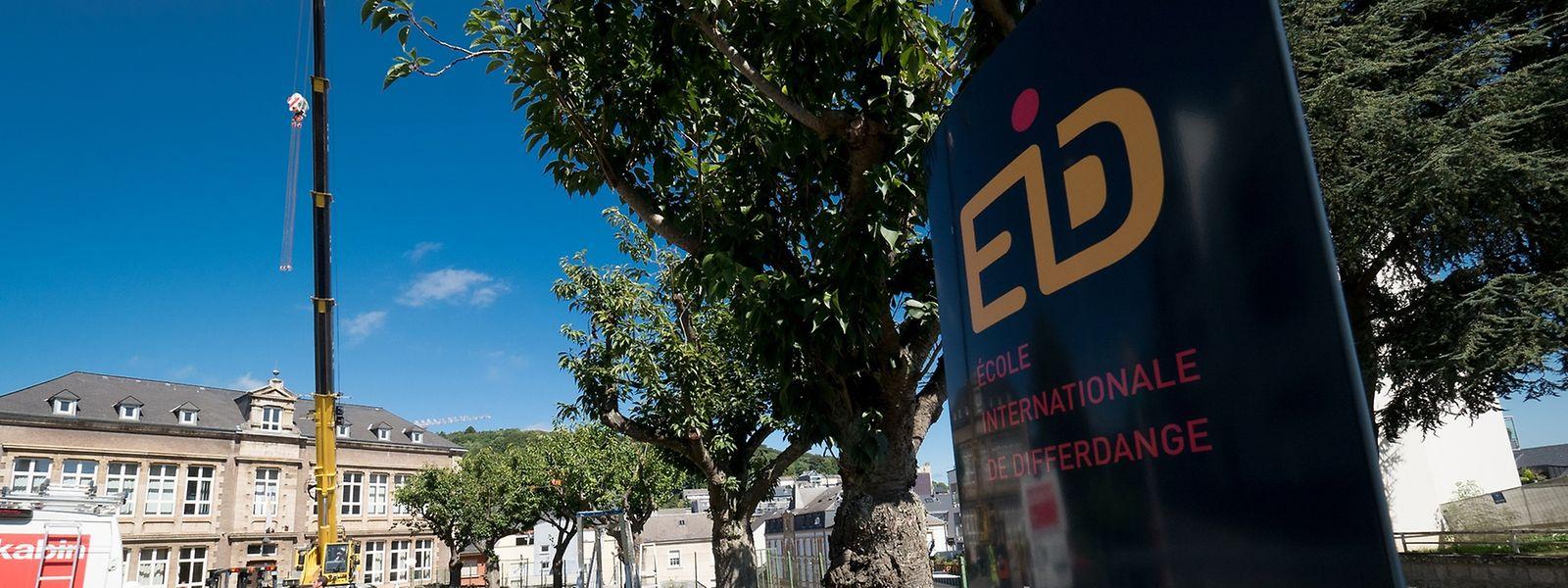 Os portugueses são a segunda nacionalidade mais representada na nova escola, com 25 alunos entre os 110 inscritos. Apesar disso, por falta de interesse na língua portuguesa, a escola arranca sem aulas de português no primário