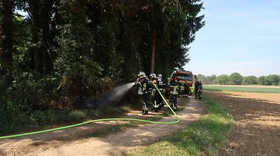 Les pompiers du pays sont en alerte maximale quant au risque de feu de forêt