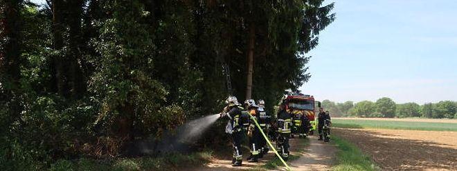 Durch das rasche Einschreiten der Feuerwehr konnte ein Großbrand in Fentingen am Wochenende vermieden werden.