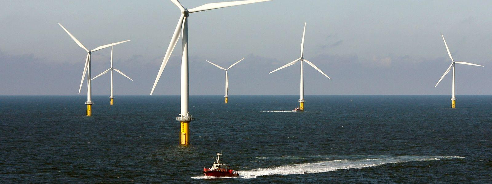 Belgique et Danemark sont les premiers pays européens à investir autant dans l'éolien off-shore.