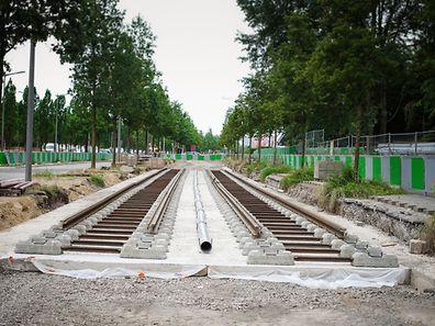 les premiers rails du Luxtram ont été posées bvd Kennedy - entre la Coque et l'université -  - Photo : Pierre Matgé