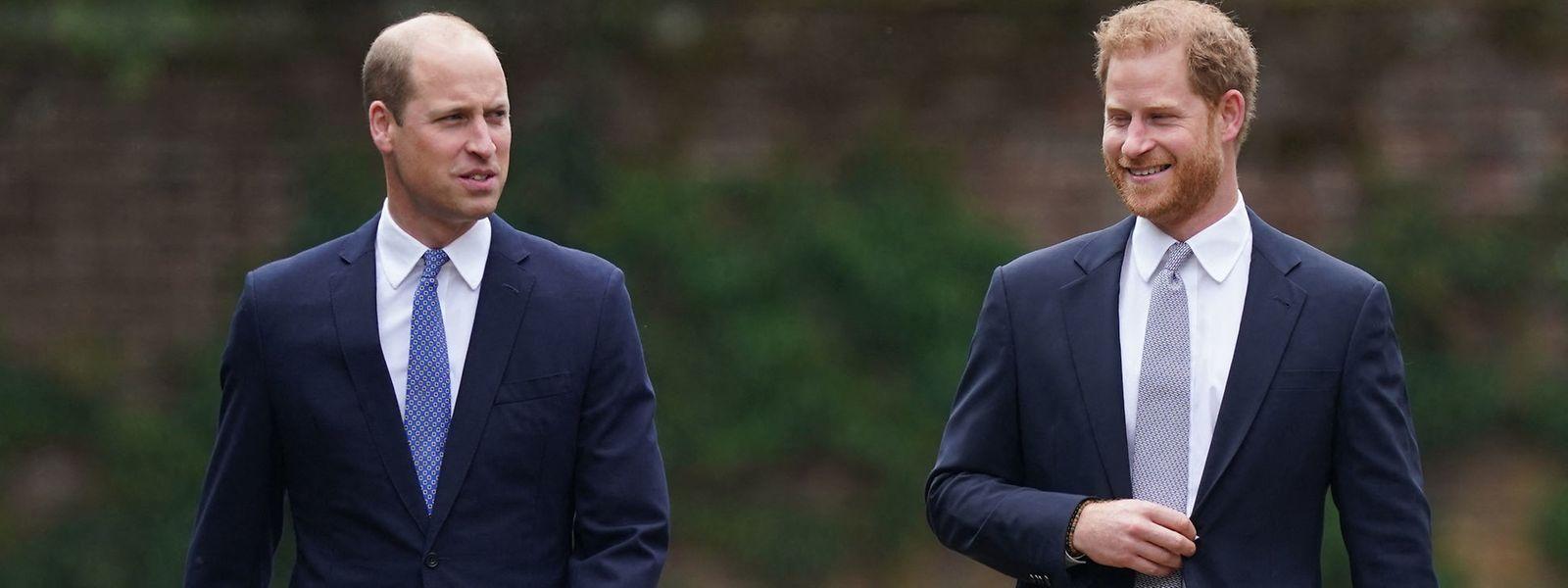 Harry und William sind sich bei weitem nicht in Allem grün.