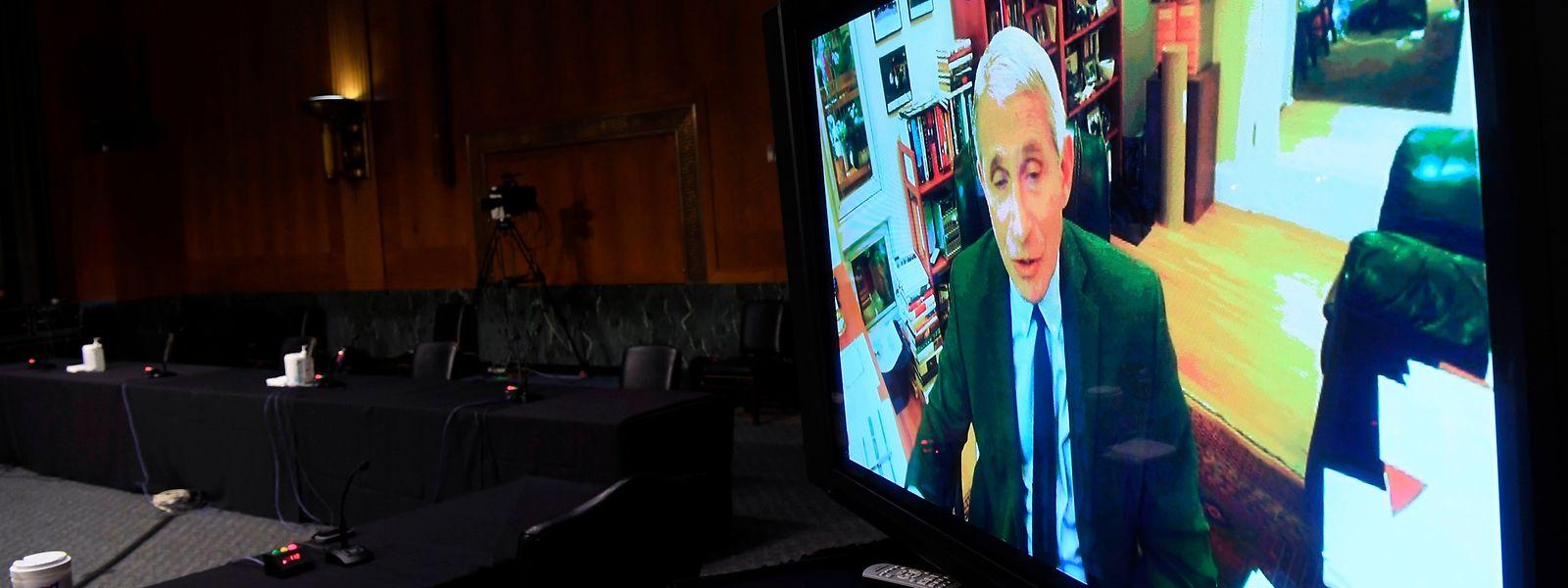 Fauci wandte sich per Videoschaltung an den Senat.