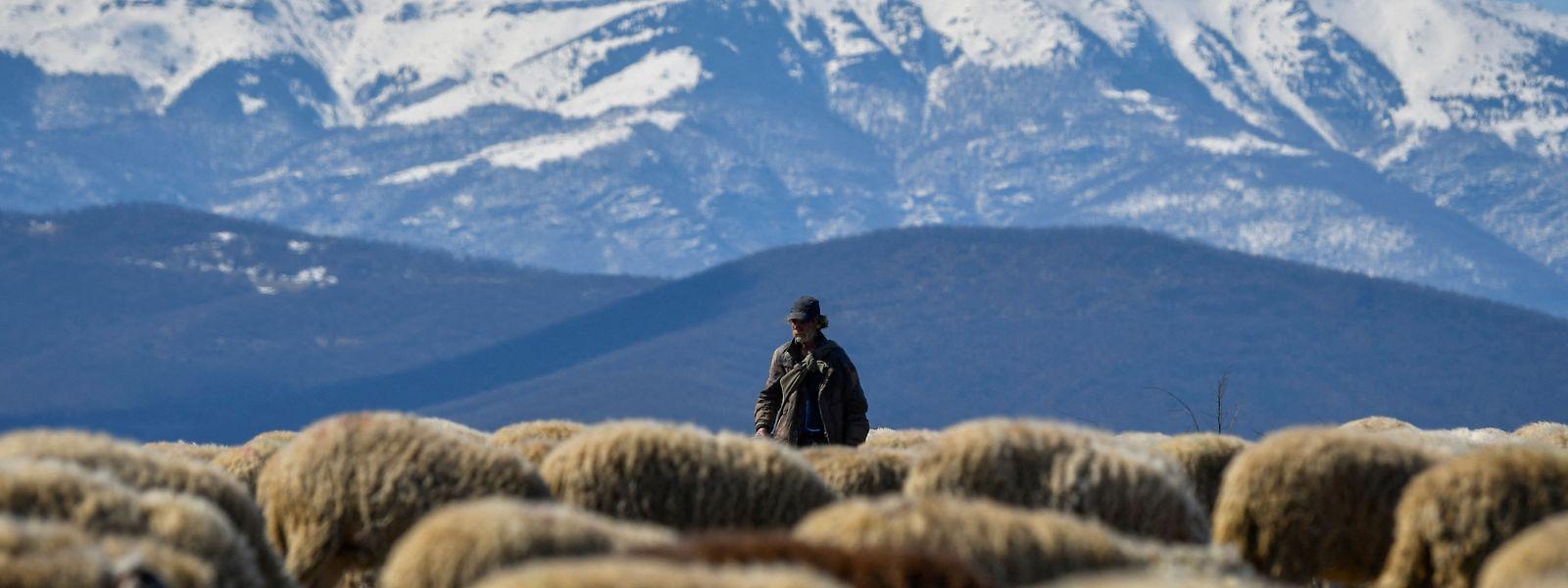 Das landwirtschaftlich geprägte Bulgarien ist das ärmste EU-Mitglied.