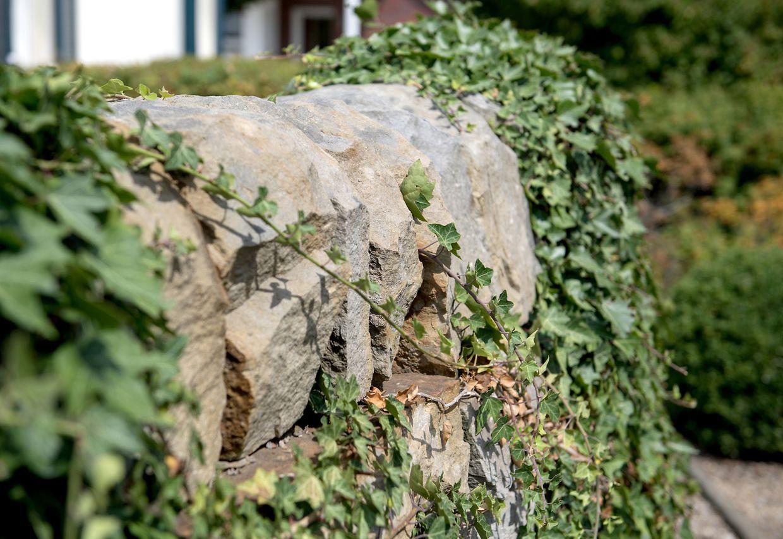 Verwitterte Optik statt akkurat gepflegt: Eine Natursteinmauer macht sich im Garten gut.