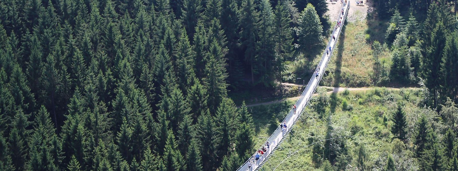 Wer die Geierlay-Hängebrücke vor 10 Uhr am Morgen besucht, hat sie beinahe für sich alleine. Danach tummeln sich immer mehr Wanderer auf der 360 Meter langen Konstruktion.