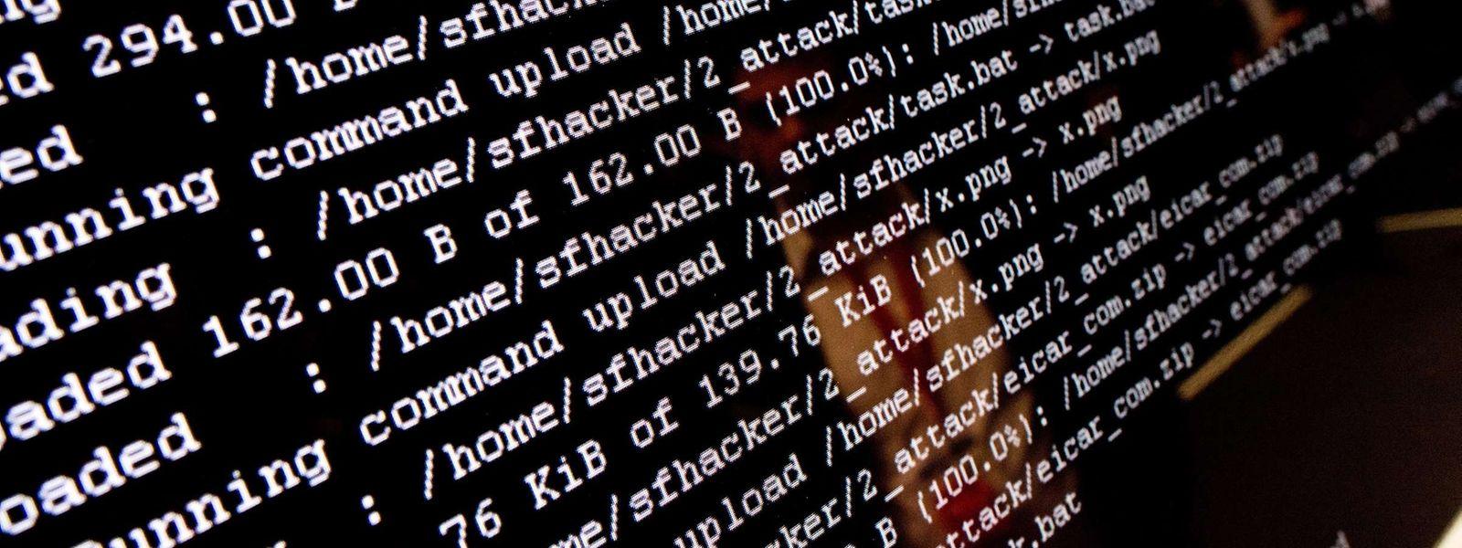Depuis le début de l'année, trois cas de piratage de sociétés luxembourgeoises ont été médiatisés.