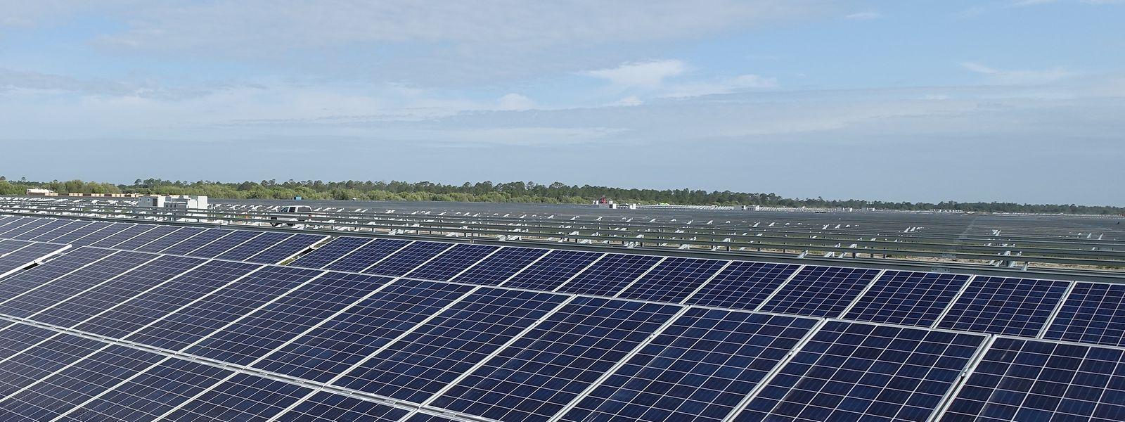 Israel könnte mit Solarenergie 90 Prozent des Strombedarfs decken, sagt der Solarexperte David Faiman von der Ben-Gurion-Universität.