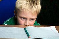 Kind Schüler Junge Schule Lernen Heft Bildung (SHUTTERSTOCK)