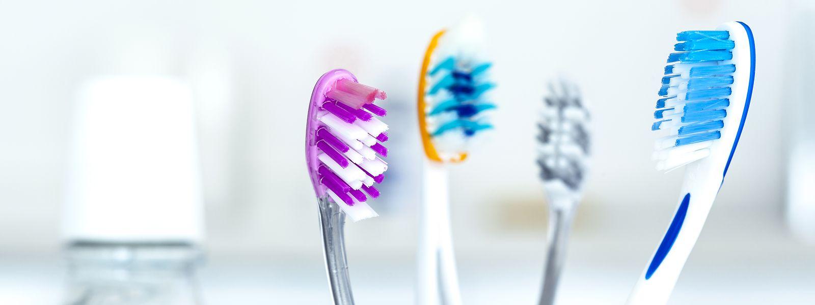 Zahnpflege ist doppelt wichtig: Das Parodontitis auslösende Bakterium findet sich im Hirngewebe von Alzheimer-Patienten.