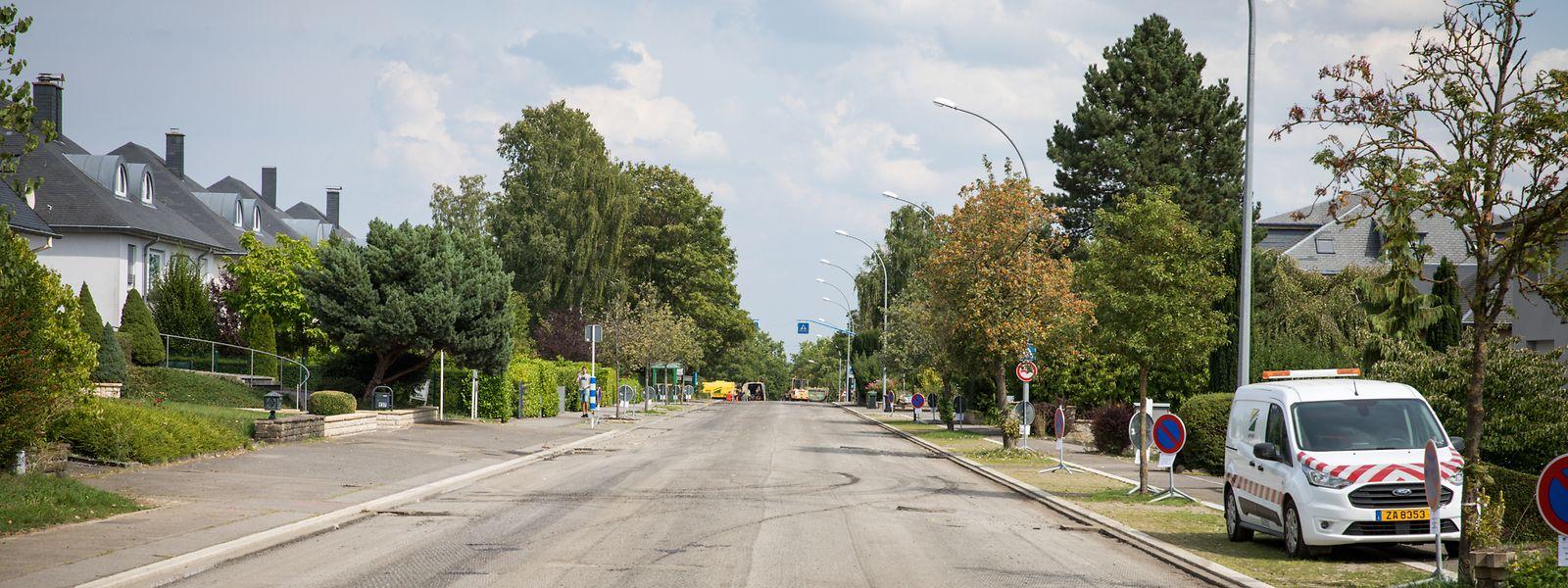 Lokales - Bürgerinitiative Dippach - Wiederstand gegen Arbeiten auf Hauptstraße in Dippach - Foto: Pierre Matgé/Luxemburger Wort
