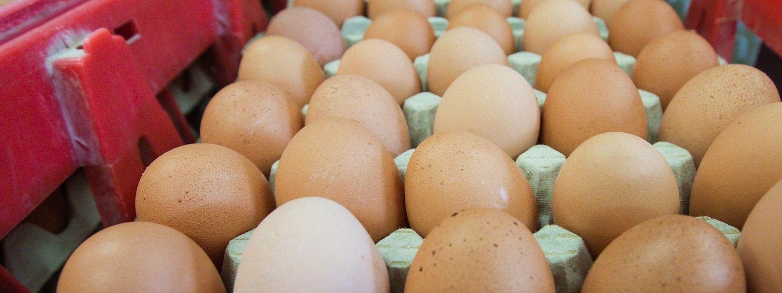 In Luxemburg wurden bisher keine kontaminierten Eier gefunden.
