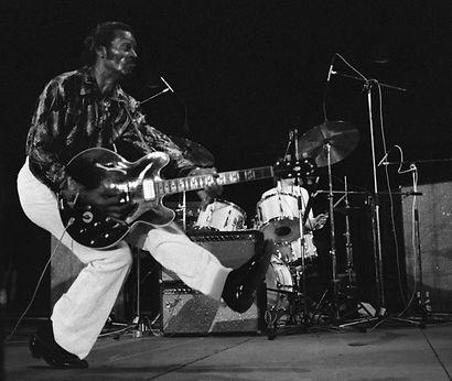 A la fin des années 50, son succès est gigantesque, ses chansons sont partout et il parvient à devenir le héros d'une jeunesse blanche fascinée par le rock.