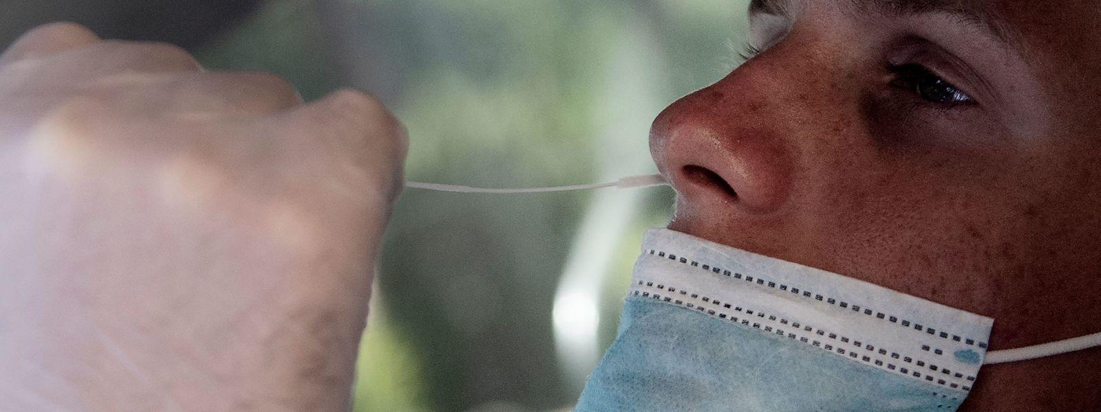 Depuis le début de la semaine, 179 nouveaux cas d'infection covid ont pu être détectés grâce à la campagne de dépistage massif.