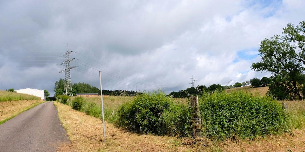 """Am """"Gréngewee"""" hinter dem Verteilerkreis am """"Fridhaff"""" in Richtung Hosingen soll das neue Einsatzzentrum entstehen."""