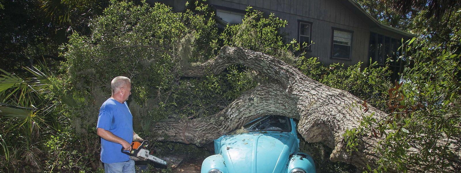Der Sturm entwurzelte auf seinem Weg landeinwärts zahlreiche Bäume und verursachte hohen Sachschaden.