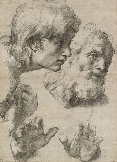 Sein künstlerisches Talent und handwerkliches Können offenbart der Renaissancemaler vor allem in seinen Zeichnungen, beispielsweise in diesen Kopf- und Halsstudien.