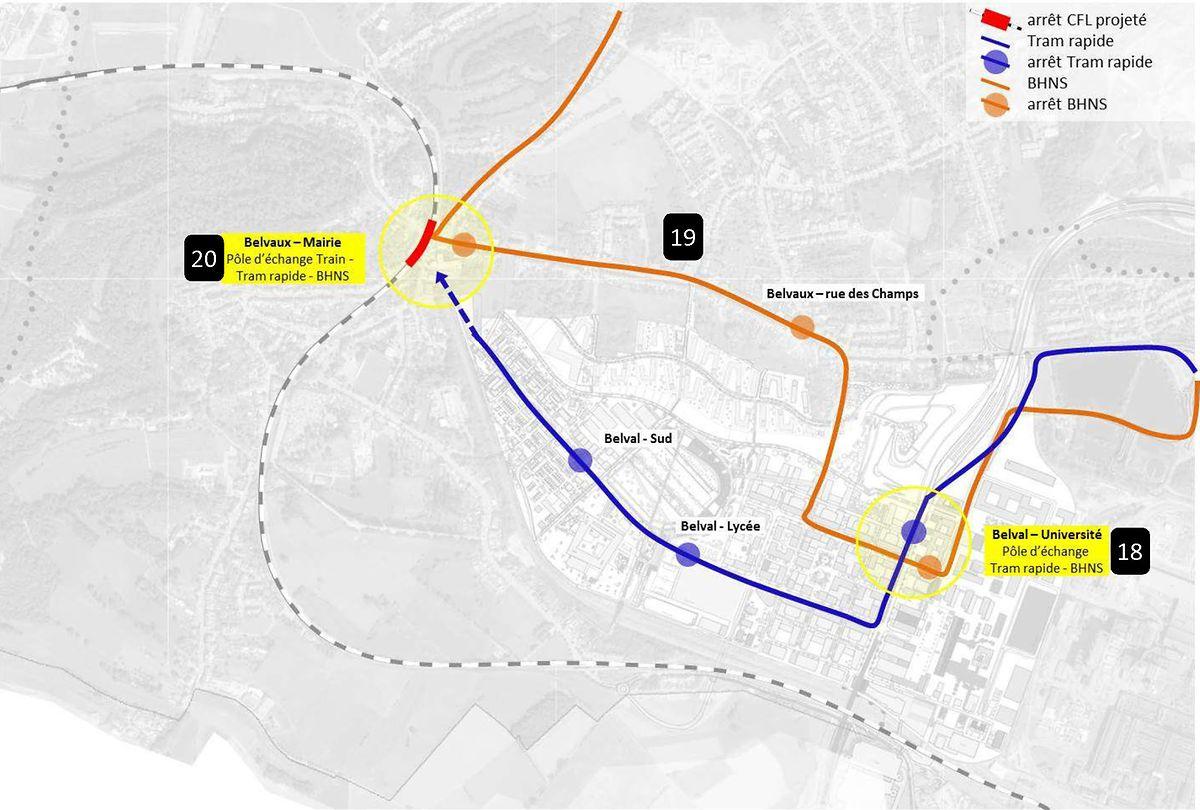 Zwischen der Uni Belval und dem Rathaus in Beles werden Superbus (orange) und Tram (blau) unterschiedliche Strecken bedienen.