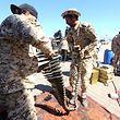 08.04.2019, Libyen, Tripolis: Kämpfer einer bewaffneten Gruppe aus Misrata, die den Streitkräften unter Fayiz as-Sarradsch (GNA) nahe steht, bereiten sich auf Kämpfe gegen die selbsternannte Libysche Nationalarmee (LNA) unter der Leitung von General Chalifa Haftar vor. Foto: Stringer/dpa +++ dpa-Bildfunk +++
