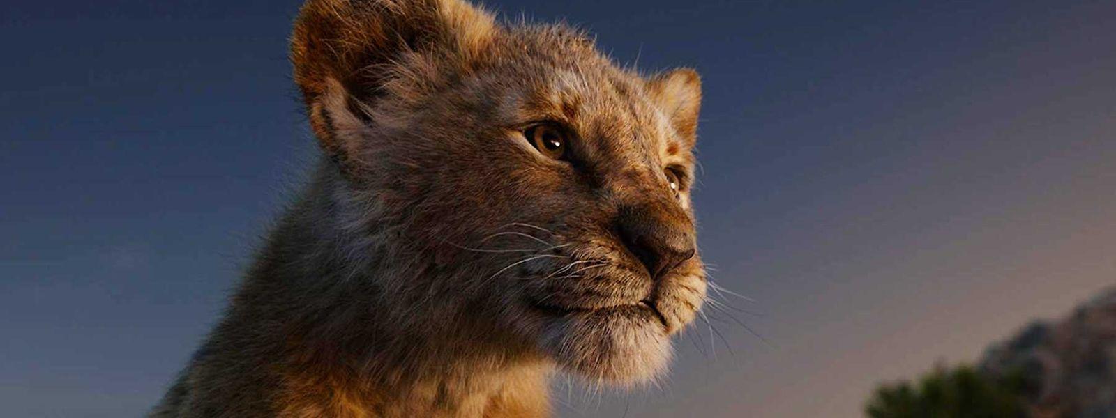 """Simba erscheint in der Neuverfilmung von """"The Lion King"""" fast schon real."""