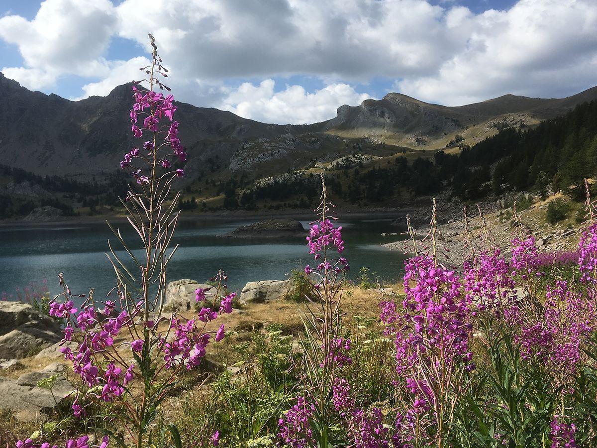 Natur in seiner schönsten Form: Der Bergsee Lac d'Allos ist ein beliebtes Ausflugsziel für Familien.