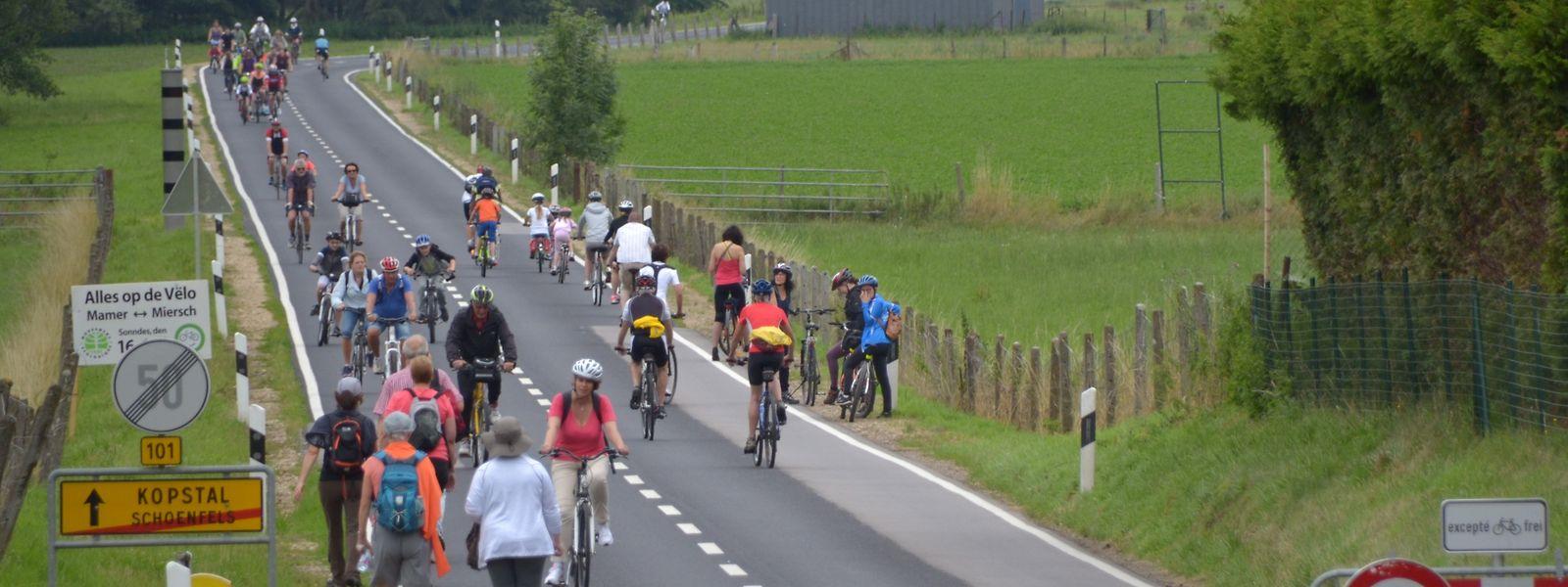 Das Mamertal wird zumindest abschnittsweise dem Radverkehr vorbehalten sein.