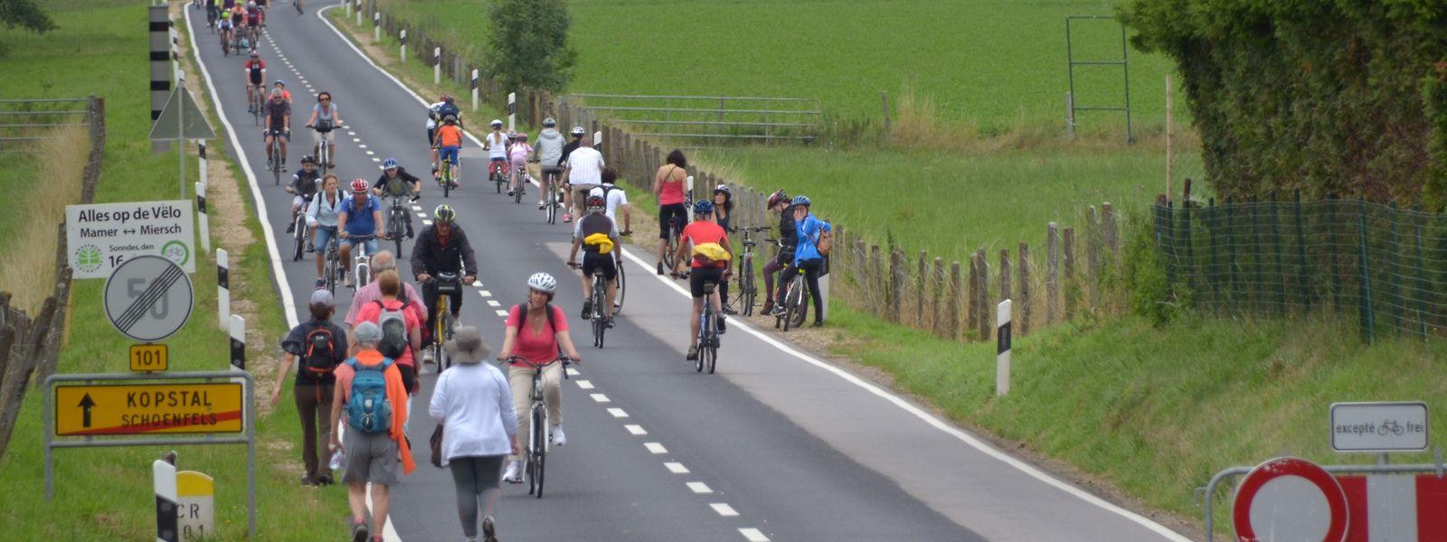 Unter anderem das Mamertal wird zumindest abschnittsweise an den Wochenenden im Augst dem Radverkehr vorbehalten sein.